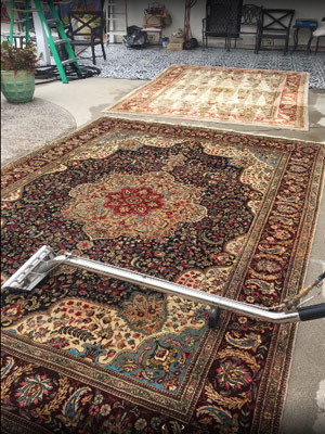 Upholstery and Area Rug Cleaning